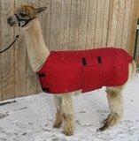 Alpaca jacket Adult medium weight_