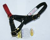 alpaca halter with colored nose band (set of 4)_