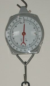 Hand weigh scale