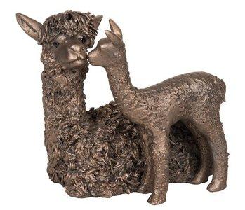 Alpaca with cria standing